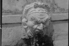 Carranca da Fonte do Ribeirão