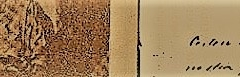 imagem Autógrafo Firmina 8