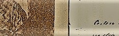imagem Autógrafo Firmina4